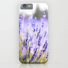 Lavenders iPhone 6 Slim Case