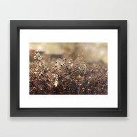 Autumn Morning Framed Art Print