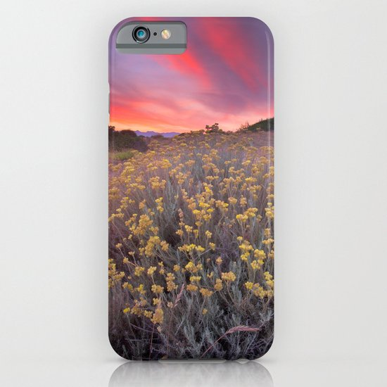 magical beams of light at sunset iPhone & iPod Case