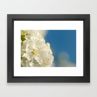 Spring Crab Apple Blosso… Framed Art Print