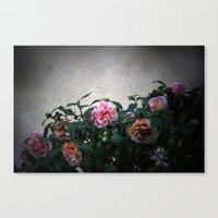 flowers on prospect ave. Canvas Print