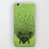 Thorny hedgehog iPhone & iPod Skin