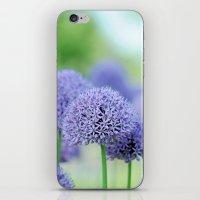 Allium Dream iPhone & iPod Skin
