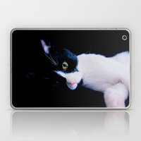 Black White Cat Laptop & iPad Skin