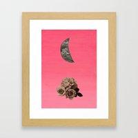 Crescent Rose Framed Art Print