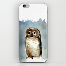 Little, Brown iPhone & iPod Skin