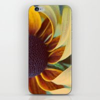 Black eyed susan 03 iPhone & iPod Skin