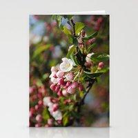 Apfelblüten  Stationery Cards