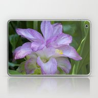 Tropical Pink Flower Laptop & iPad Skin