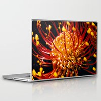 candy Laptop & iPad Skins featuring Candy by Stephen Linhart