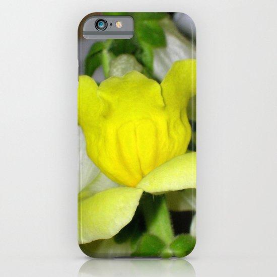 flora VI iPhone & iPod Case