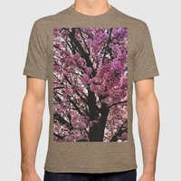 Spring Tree Mens Fitted Tee Tri-Coffee SMALL
