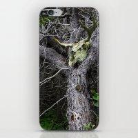 Forest Spirit Skull iPhone & iPod Skin