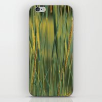 Golden Light iPhone & iPod Skin