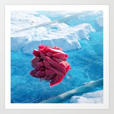 Arctic Gems Art Print
