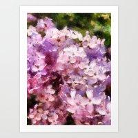 lilac season is my favorite  Art Print