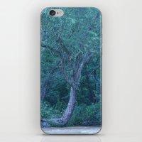 Fariy Tale Tree 2 iPhone & iPod Skin