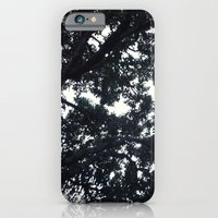 Under the trees iPhone 6 Slim Case