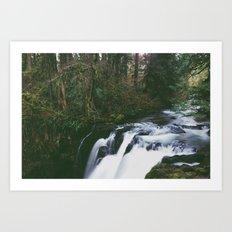 Woodland Creek Art Print