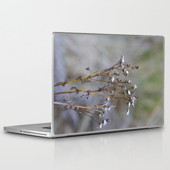 Frosty Seeds Laptop & iPad Skin