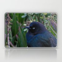 Black Bird Laptop & iPad Skin