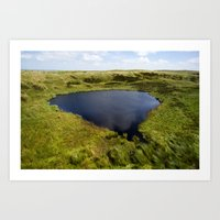 Mermaid's Pool Art Print