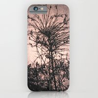 iPhone & iPod Case featuring flower of the night. by minimal.is.the.reason