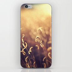 For The Dream iPhone & iPod Skin