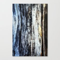 Damp on Wood Canvas Print