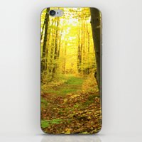 Autumnal Pathway iPhone & iPod Skin