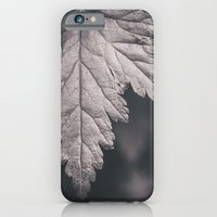 iPhone & iPod Case featuring Black and White Forest Leaf by Jessica Torres Photography