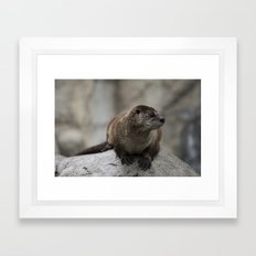 Doin' What He Otter Framed Art Print