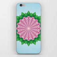 Spring Pink iPhone & iPod Skin