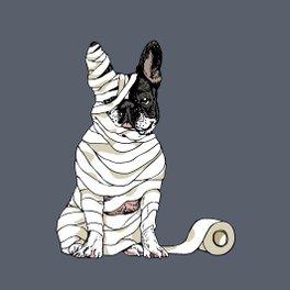 Framed Art Print - Mummy French Bulldog - Huebucket