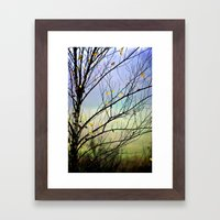 Riverbirch Framed Art Print