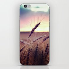 Glide and Sing iPhone & iPod Skin