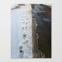winter is gone? Canvas Print