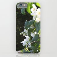 iPhone & iPod Case featuring Spring Glow by Philippa Williams