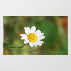 sweet daisy  Rug