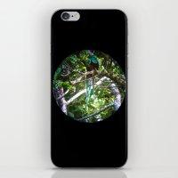Quetzal Medallion iPhone & iPod Skin
