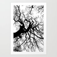 Branches - For Iphone Art Print