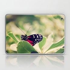 Peek A Boo Butterfly Laptop & iPad Skin