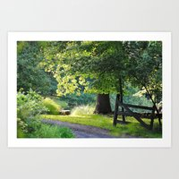 Sunshine and Shadows Art Print