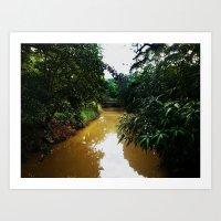 Camuy River @ Camuy, Pue… Art Print