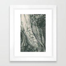 Tree Spine 01B Framed Art Print