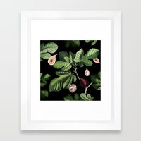Figs Black Framed Art Print