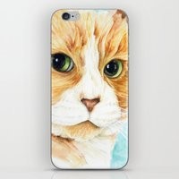 Stan the grumpy cat iPhone & iPod Skin