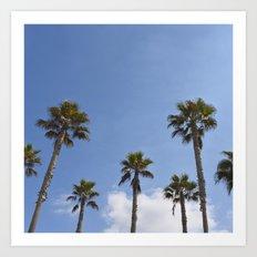 Sky Palms Art Print