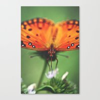 Be Still Canvas Print