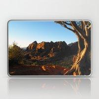 Top Of Merry-Go-Round Laptop & iPad Skin